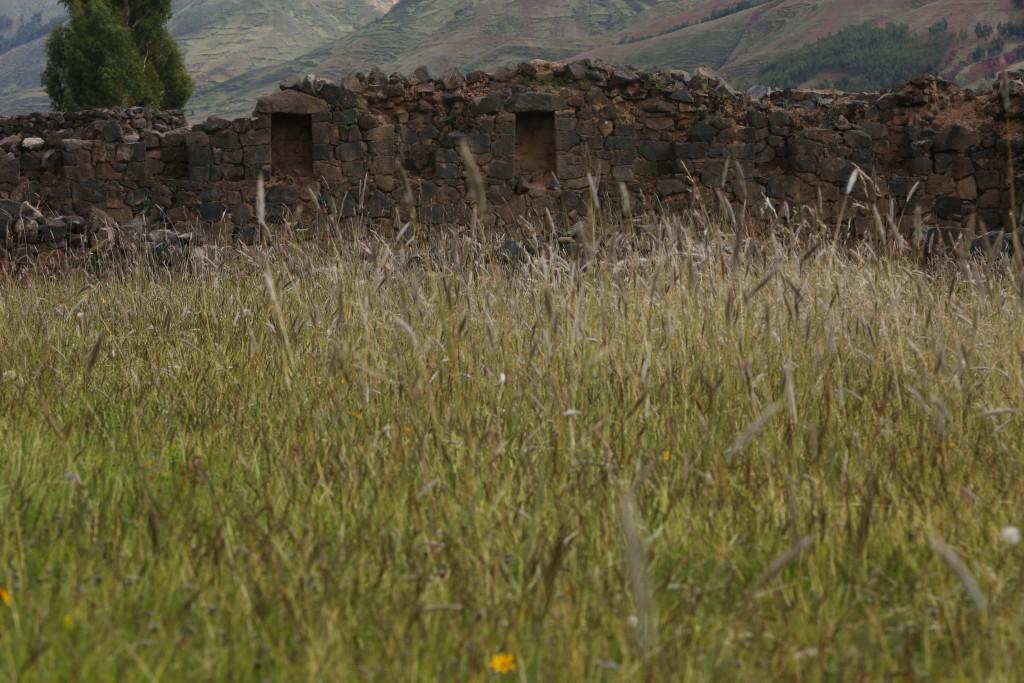 Vestiges d'une route inca aux alentours de Cuzco