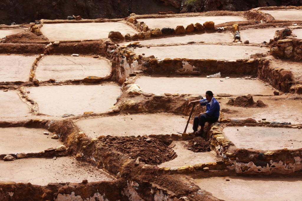 Aujourd'hui encore, les péruviens récoltent le sel des bassins